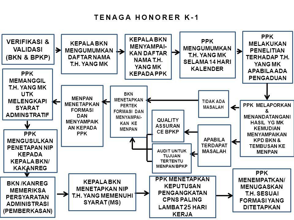 TENAGA HONORER K-1 VERIFIKASI & VALIDASI (BKN & BPKP)
