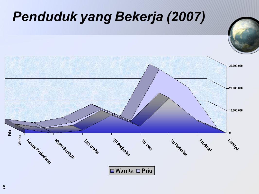 Penduduk yang Bekerja (2007)