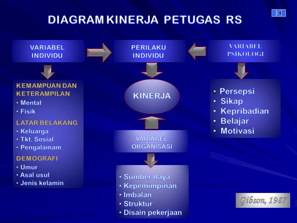 DIAGRAM KINERJA PETUGAS RS