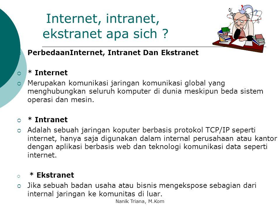 Internet, intranet, ekstranet apa sich