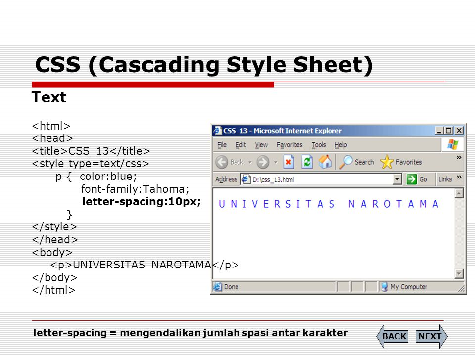 CSS (Cascading Style Sheet)