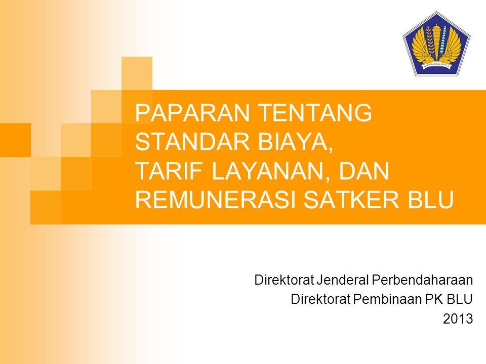 Direktorat Jenderal Perbendaharaan Direktorat Pembinaan PK BLU 2013