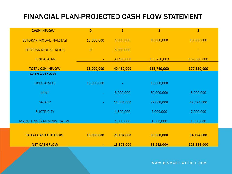 Financial plan-PROJECTED CASH FLOW STATEMENT