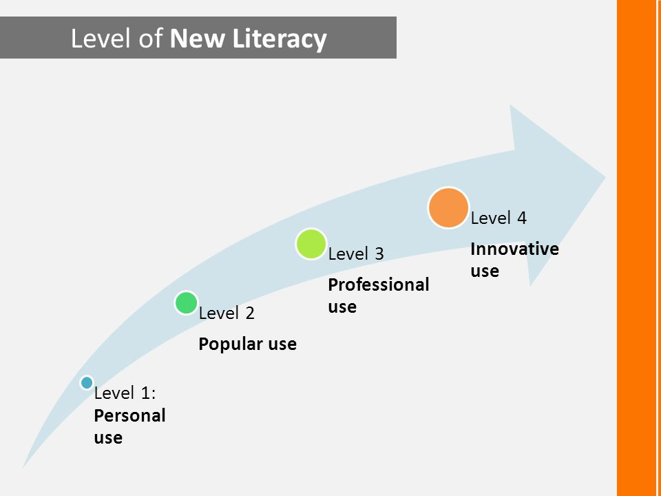 Level of New Literacy Level 4 Innovative use Level 3 Professional use