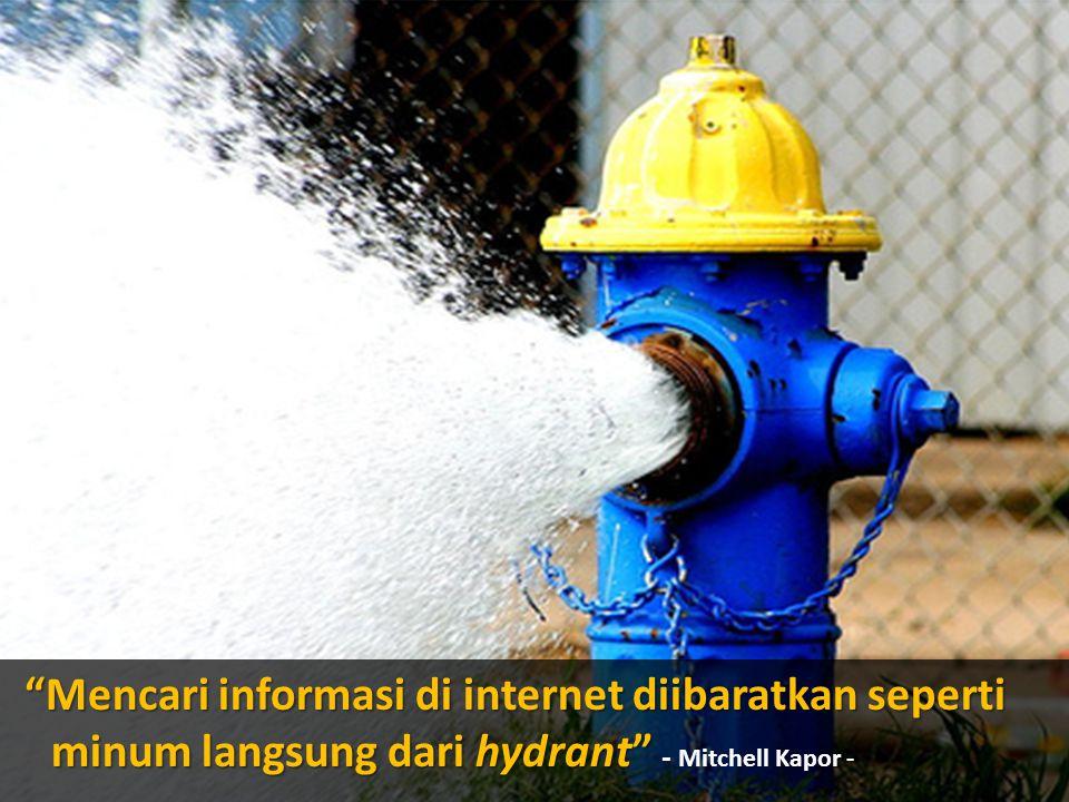 Mencari informasi di internet diibaratkan seperti minum langsung dari hydrant - Mitchell Kapor -