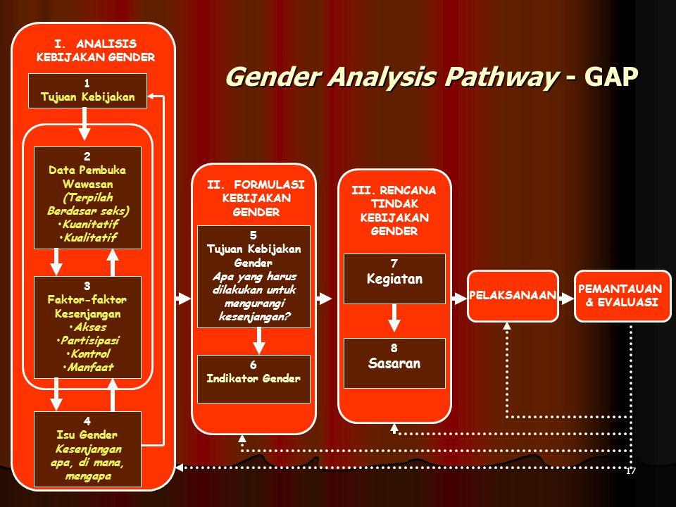 Gender Analysis Pathway - GAP