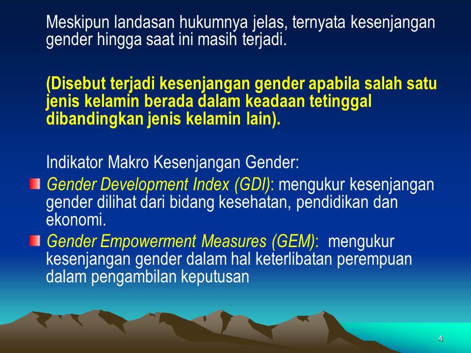 Indikator Makro Kesenjangan Gender: