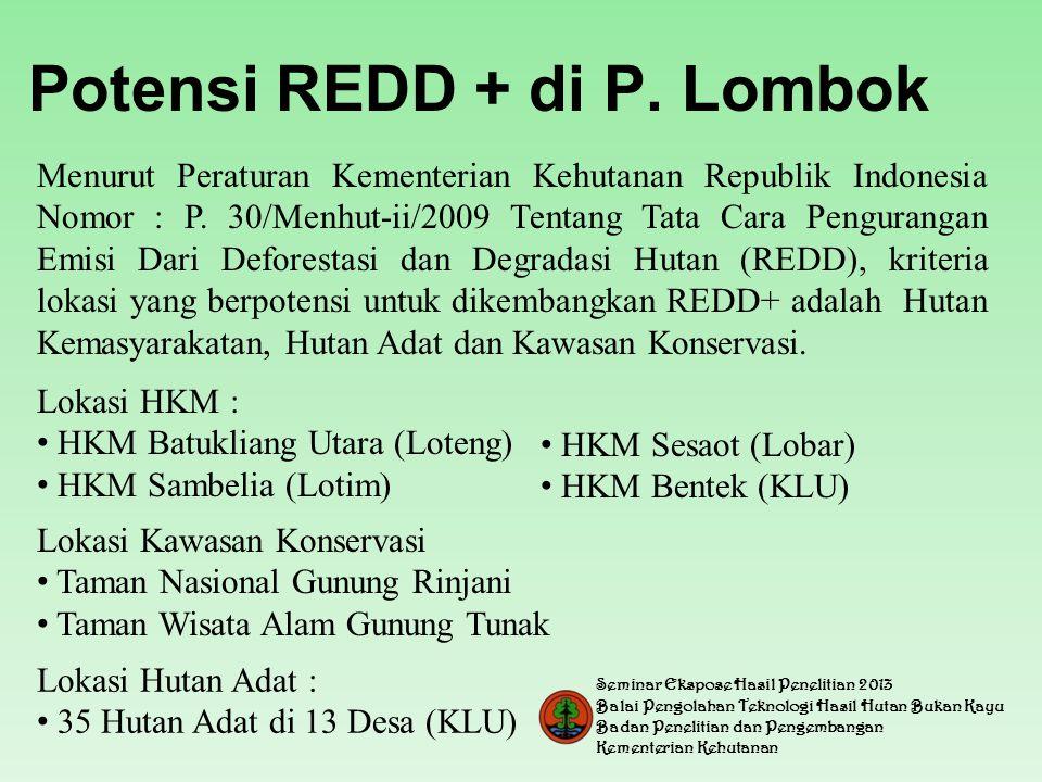 Potensi REDD + di P. Lombok