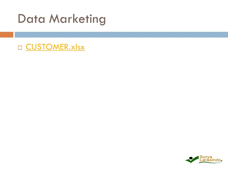 Data Marketing CUSTOMER.xlsx