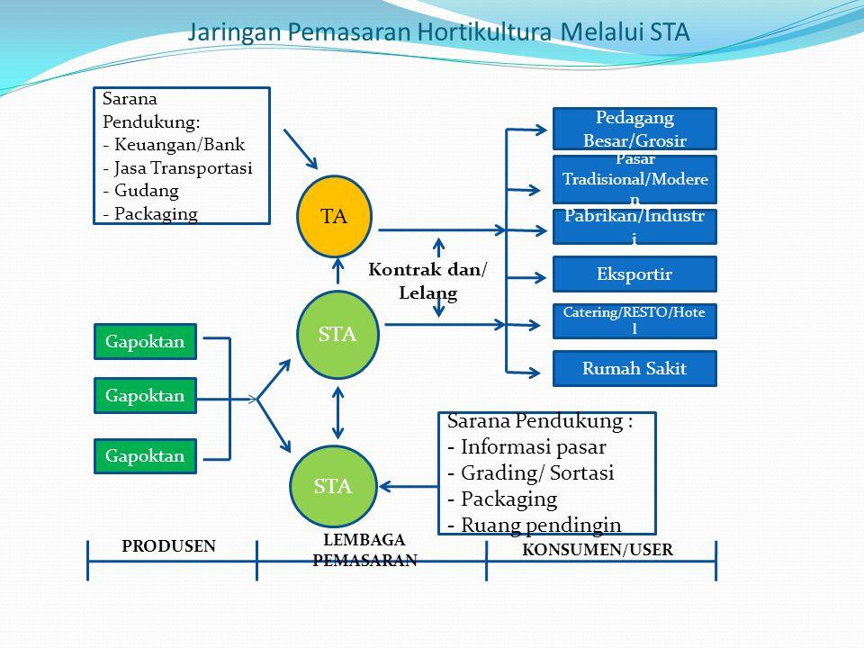 Jaringan Pemasaran Hortikultura Melalui STA