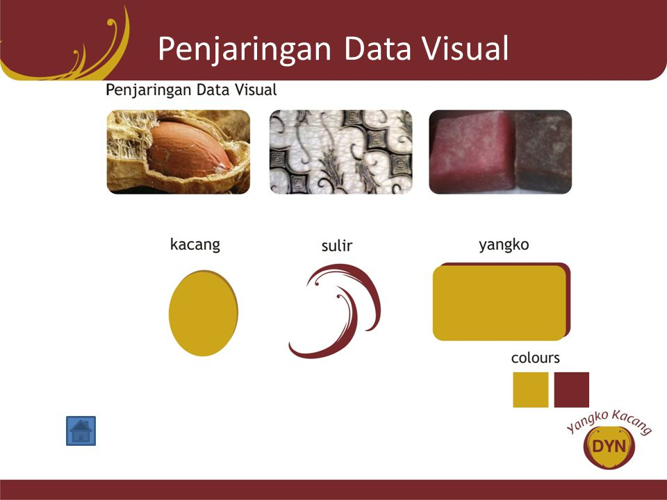 Penjaringan Data Visual