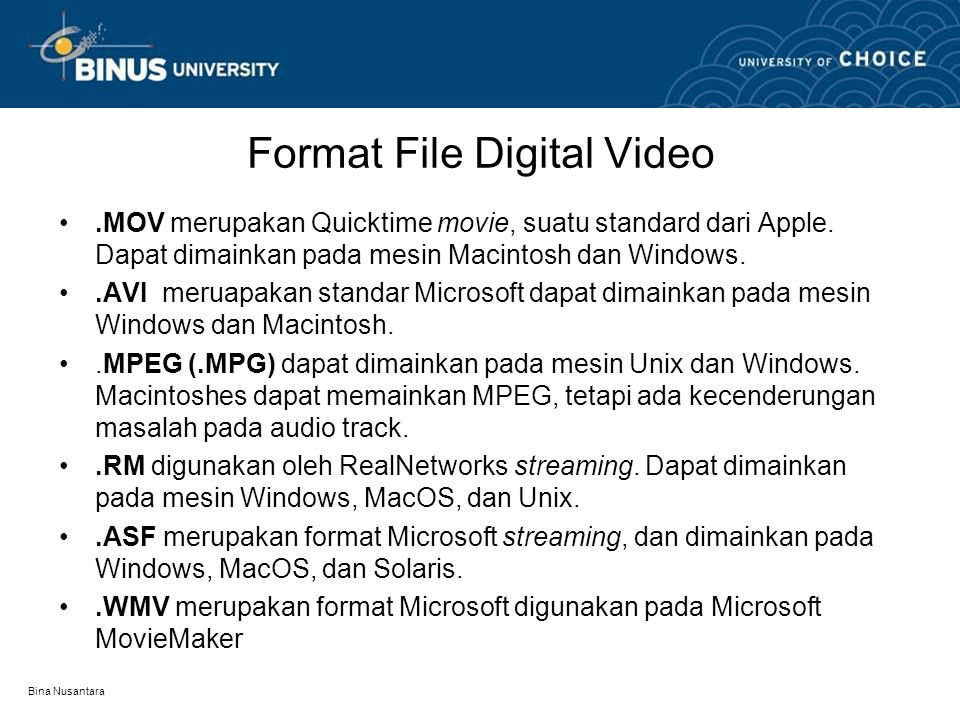 Format File Digital Video