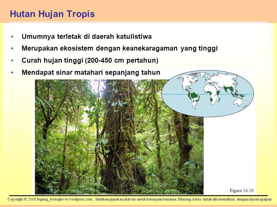 Hutan Hujan Tropis Umumnya terletak di daerah katulistiwa