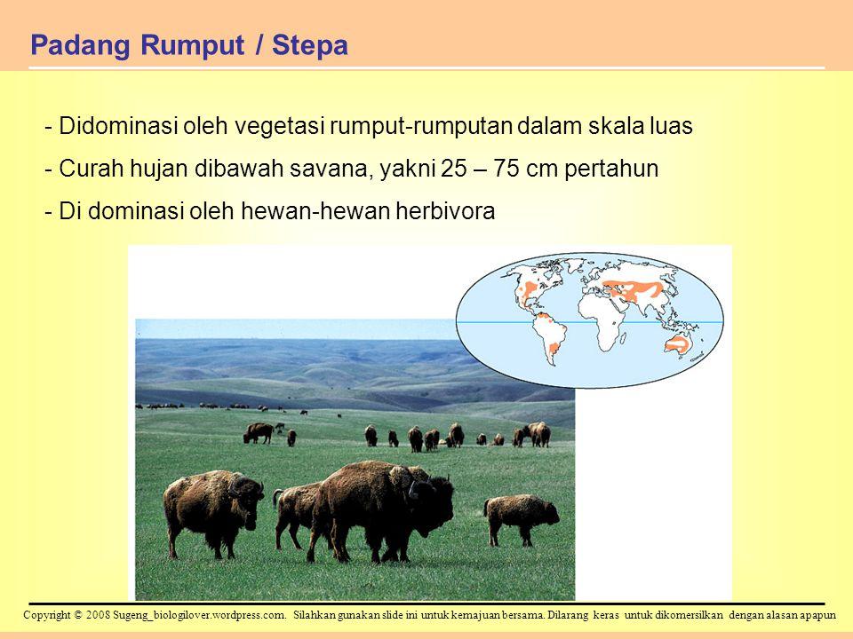 Padang Rumput / Stepa Didominasi oleh vegetasi rumput-rumputan dalam skala luas. Curah hujan dibawah savana, yakni 25 – 75 cm pertahun.