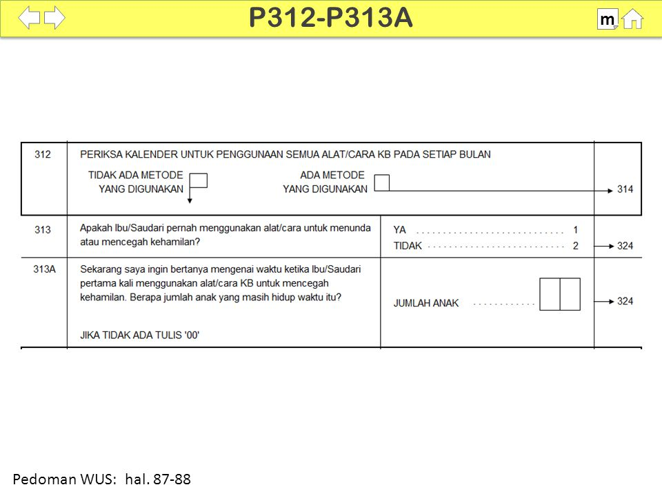 P312-P313A m SDKI 2012 100% Pedoman WUS: hal. 87-88