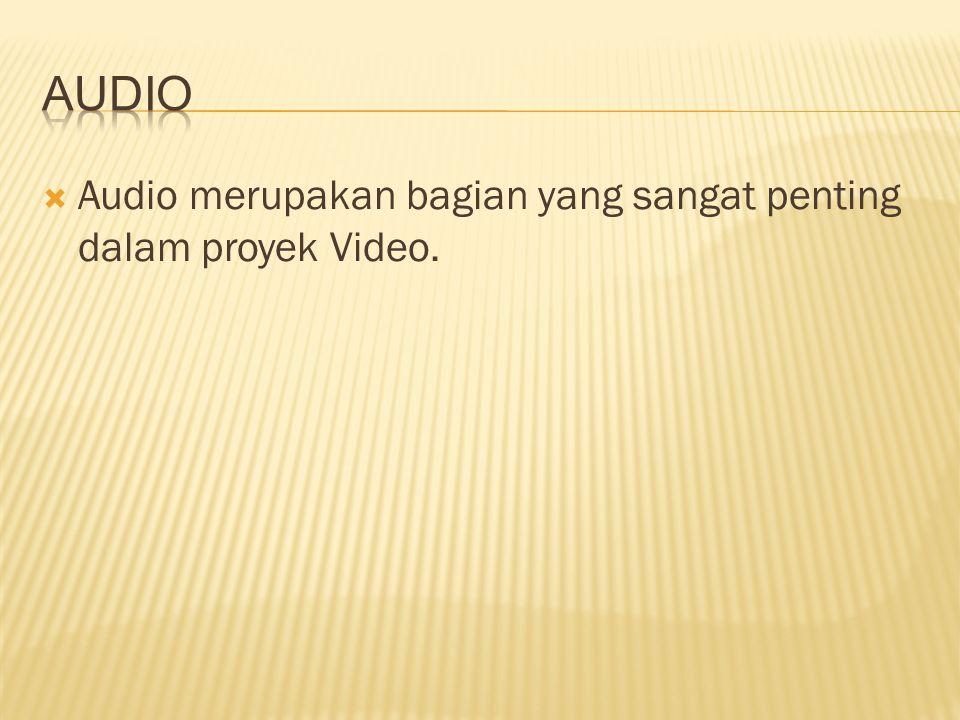 Audio Audio merupakan bagian yang sangat penting dalam proyek Video.