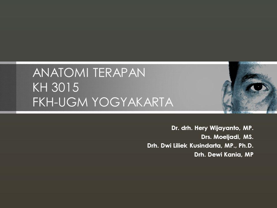 ANATOMI TERAPAN KH 3015 FKH-UGM YOGYAKARTA
