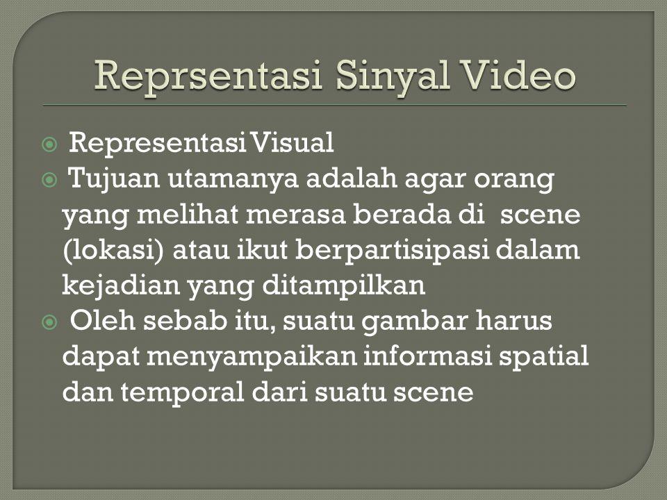 Reprsentasi Sinyal Video