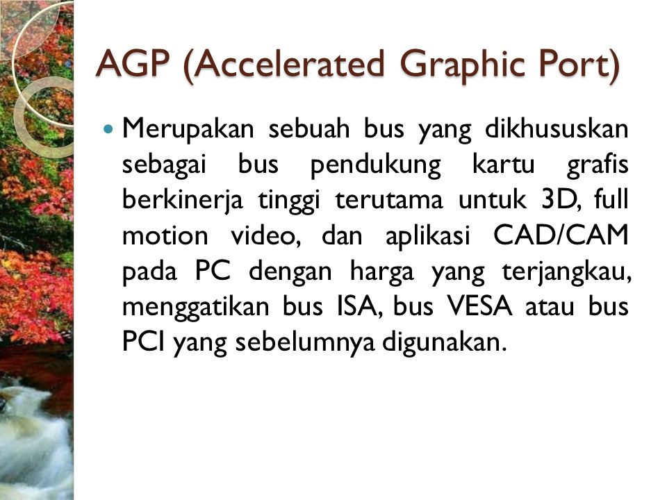 AGP (Accelerated Graphic Port)