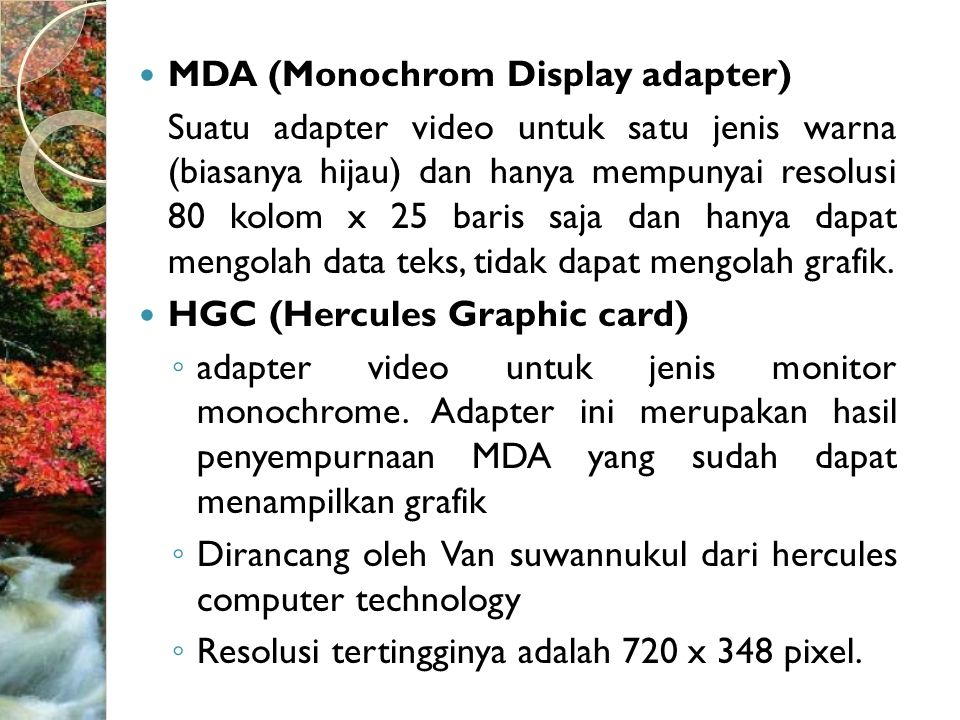 MDA (Monochrom Display adapter)