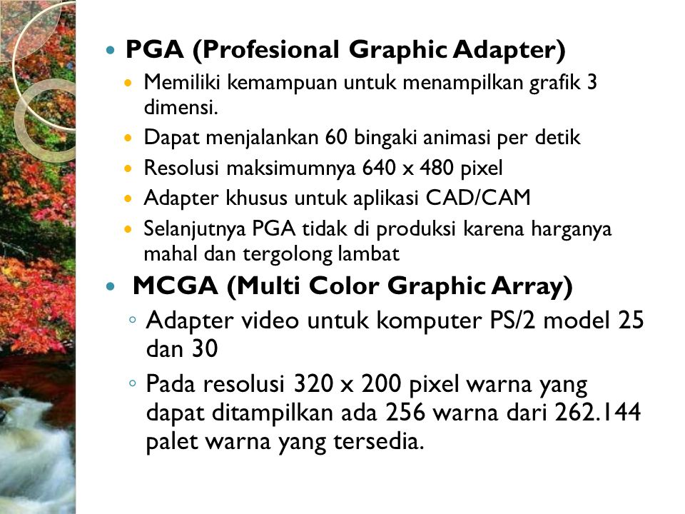 PGA (Profesional Graphic Adapter)
