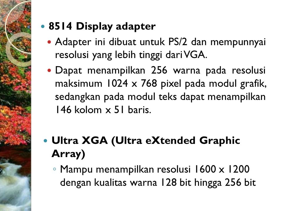 8514 Display adapter Adapter ini dibuat untuk PS/2 dan mempunnyai resolusi yang lebih tinggi dari VGA.