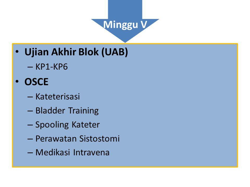 Minggu V Ujian Akhir Blok (UAB) OSCE KP1-KP6 Kateterisasi