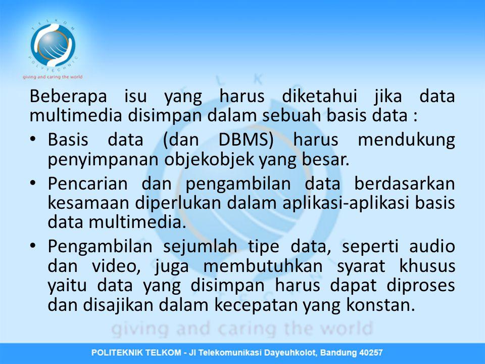 Beberapa isu yang harus diketahui jika data multimedia disimpan dalam sebuah basis data :