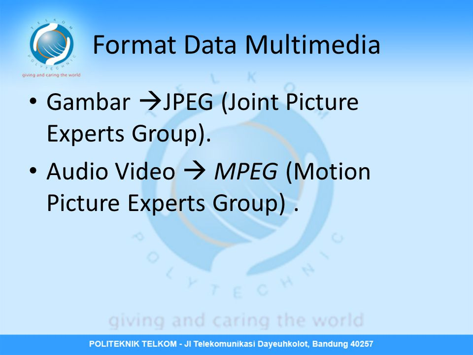 Format Data Multimedia