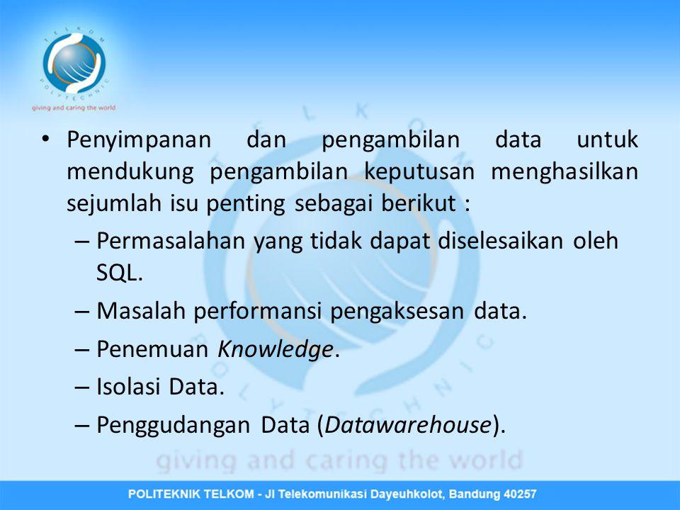 Penyimpanan dan pengambilan data untuk mendukung pengambilan keputusan menghasilkan sejumlah isu penting sebagai berikut :