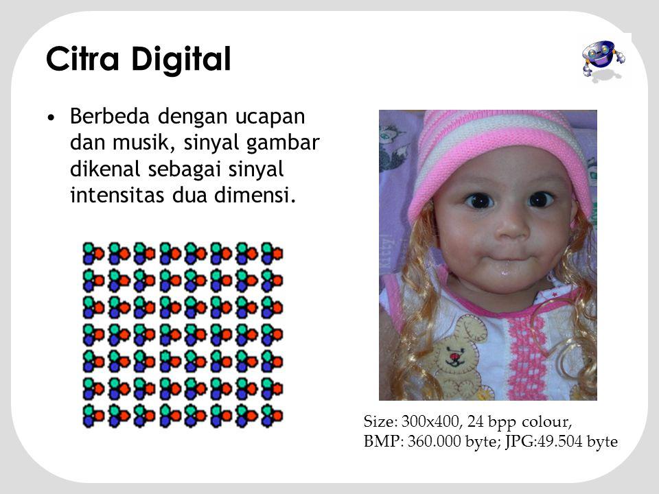 Citra Digital Berbeda dengan ucapan dan musik, sinyal gambar dikenal sebagai sinyal intensitas dua dimensi.