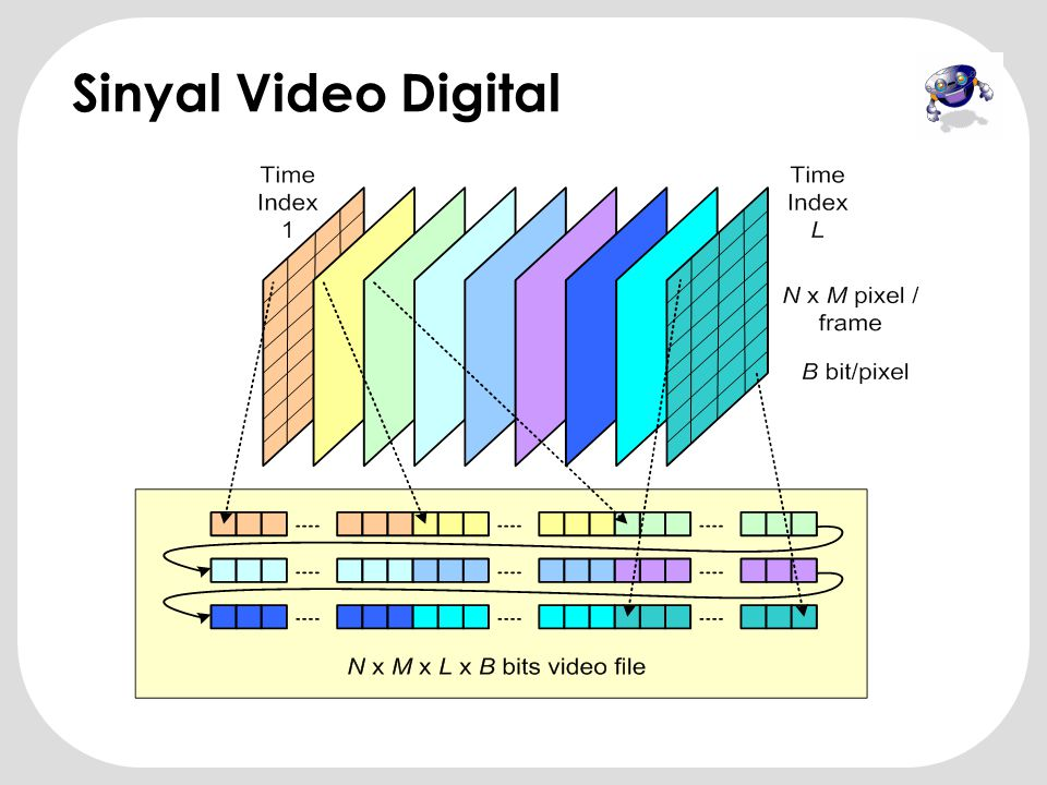Sinyal Video Digital
