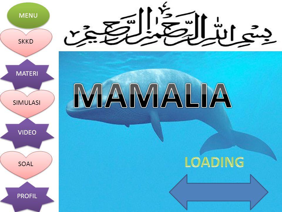 MAMALIA LOADING
