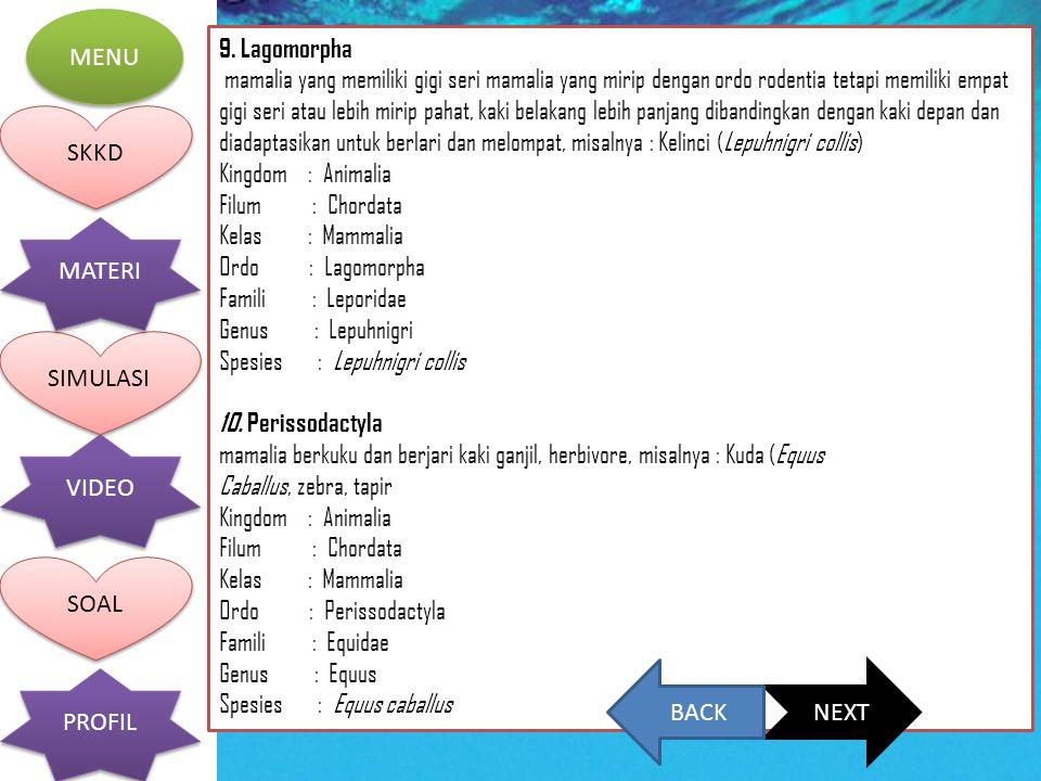 9. Lagomorpha