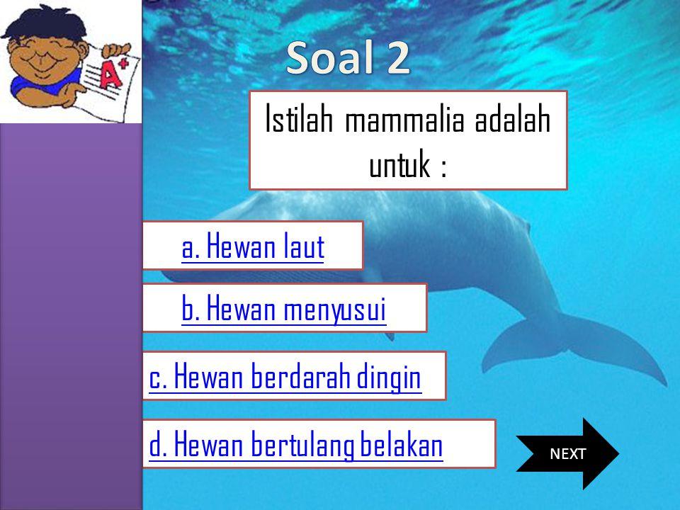 Istilah mammalia adalah untuk :