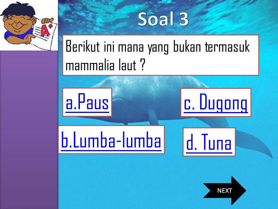 Soal 3 a.Paus c. Dugong b.Lumba-lumba d. Tuna