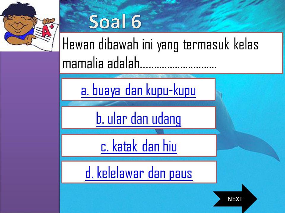 Soal 6 Hewan dibawah ini yang termasuk kelas mamalia adalah............................. a. buaya dan kupu-kupu.
