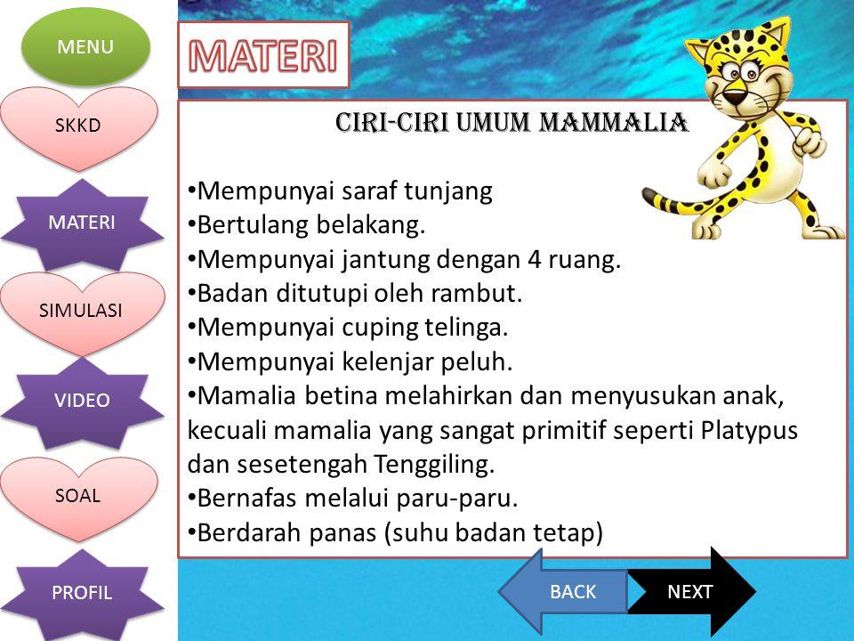 CIRI-CIRI UMUM MAMMALIA