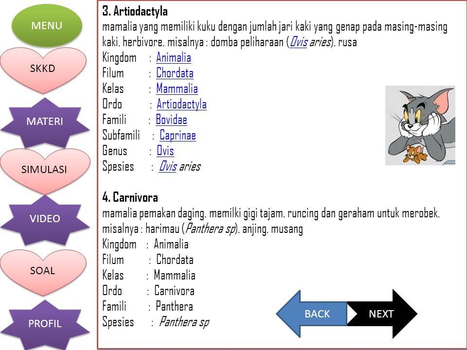 3. Artiodactyla