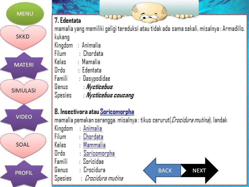 Genus : Nycticebus Spesies : Nycticebus coucang
