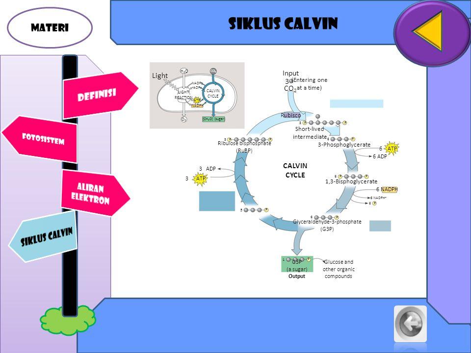 Siklus calvin MATERI DEFINISI SIKLUS CALVIN ALIRAN ELEKTRON Input