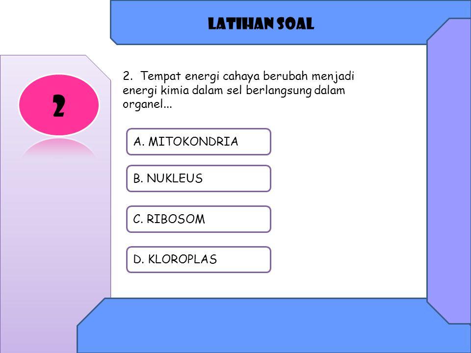 Latihan soal 2. Tempat energi cahaya berubah menjadi energi kimia dalam sel berlangsung dalam organel...
