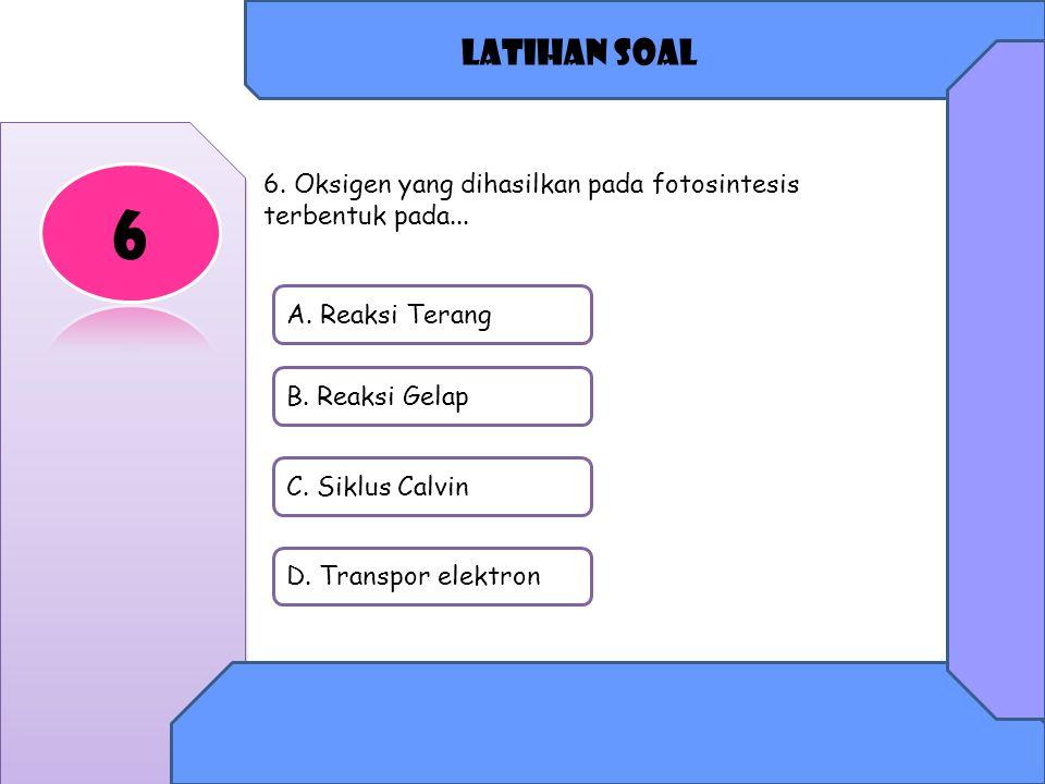 Latihan soal 6. 6. Oksigen yang dihasilkan pada fotosintesis terbentuk pada... A. Reaksi Terang. B. Reaksi Gelap.