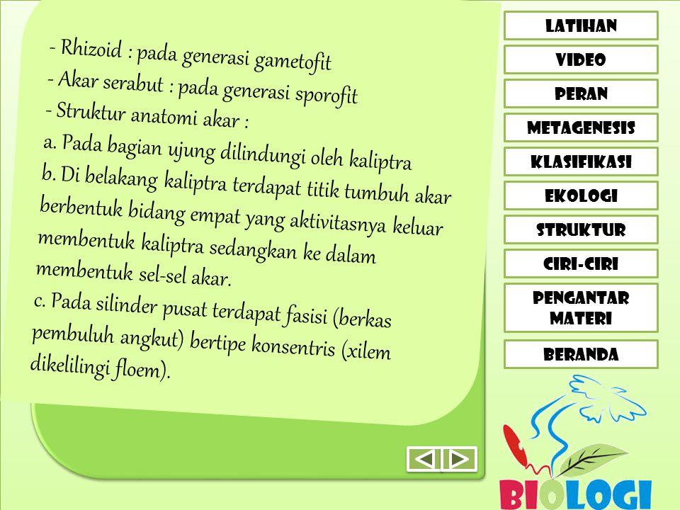 - Rhizoid : pada generasi gametofit