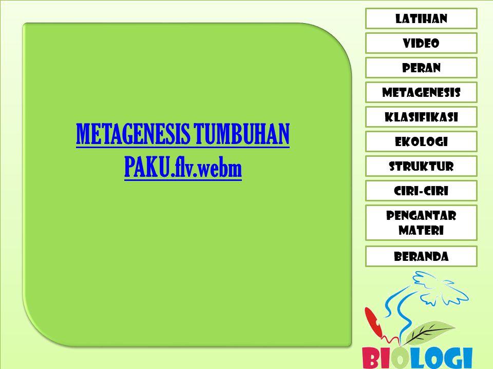 METAGENESIS TUMBUHAN PAKU.flv.webm