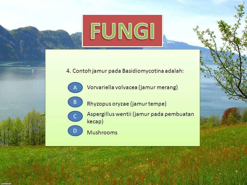 4. Contoh jamur pada Basidiomycotina adalah: