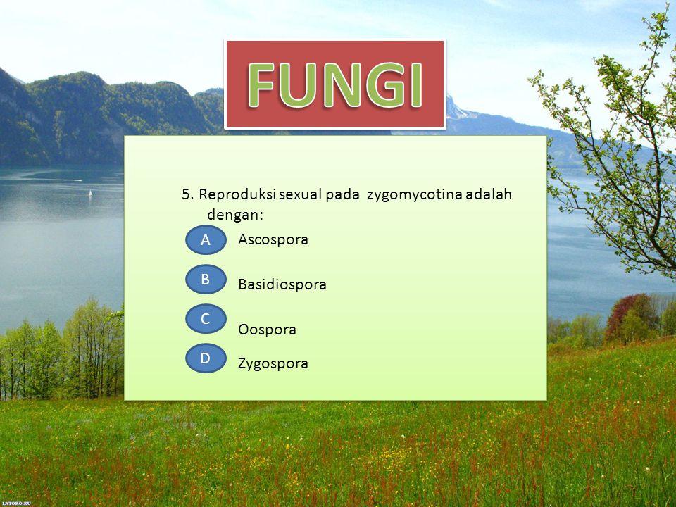 5. Reproduksi sexual pada zygomycotina adalah dengan: