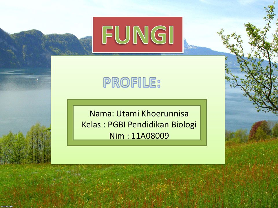 PROFILE: Nama: Utami Khoerunnisa Kelas : PGBI Pendidikan Biologi