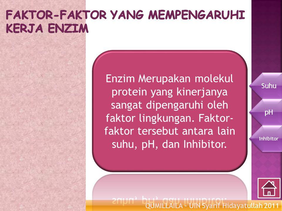 Faktor-faktor yang mempengaruhi kerja Enzim
