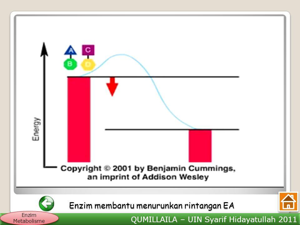 Enzim membantu menurunkan rintangan EA